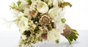 Bật mí cách thức giữ hoa cưới được lâu nhất