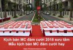 Kịch bản MC đám cưới 2018 sưu tầm Mẫu kịch bản MC đám cưới hay